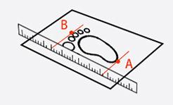 Toddler Internal Length Measure